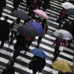 「一時雨」「時々雨」「のち」の違いとは? 意味はどうなっているの?