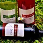 『赤ワイン』と『白ワイン』の違いとは? 味とカロリーや健康面はどうなの?